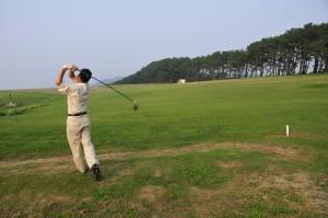 lib.golf01