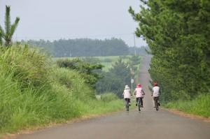 lib.cycling01
